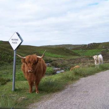 Traffic on the highland roads