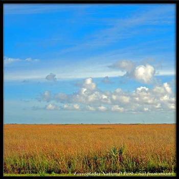 River of Grass...Everglades National Park - World Heritage Site