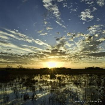 Sunrise as seen at Everglades National Park