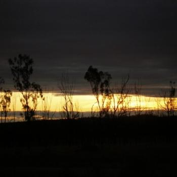 Near Collinsville, Nth Qld, at sunset.