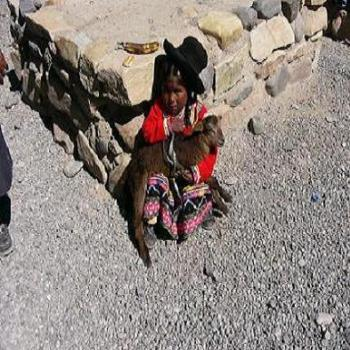 Little Peruvian girl with pet lamb in Colca Canyon Peru
