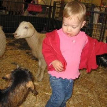 Laura with some farmyard animals